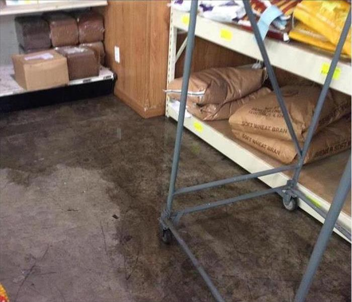 Water Damage at a Local Feedstore