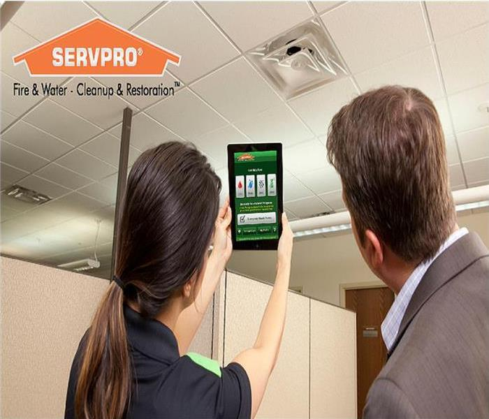 A SERVPRO staff member showing the ERP app to a customer.