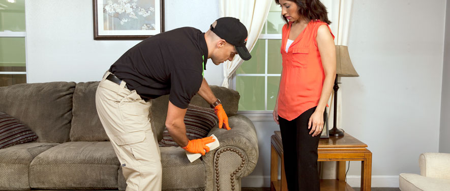 Anniston, AL carpet upholstery cleaning